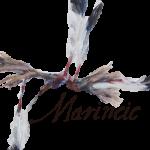 wf-logo_marincic-500-210x150